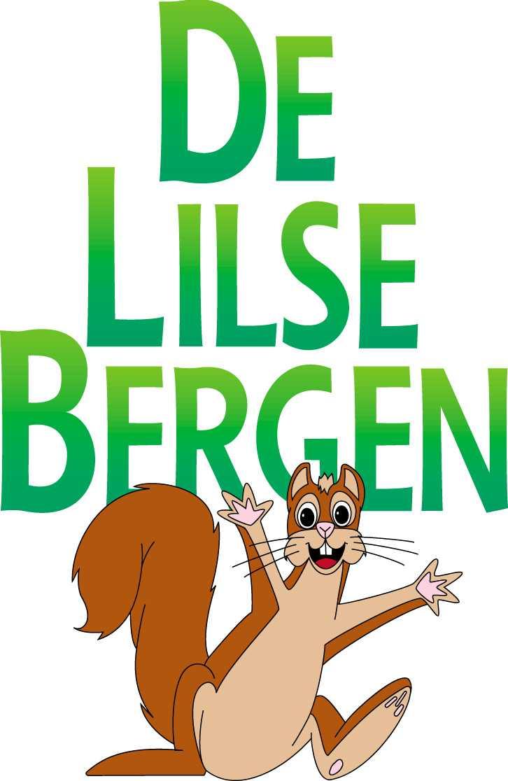 Vacature bij Directeur vzw De Lilse Bergen